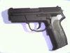 Dsck0015